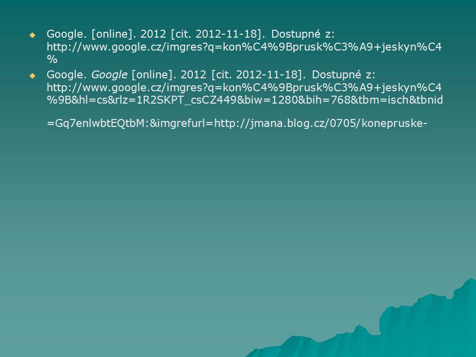 Google. [online]. 2012 [cit. 2012-11-18]. Dostupné z: http://www